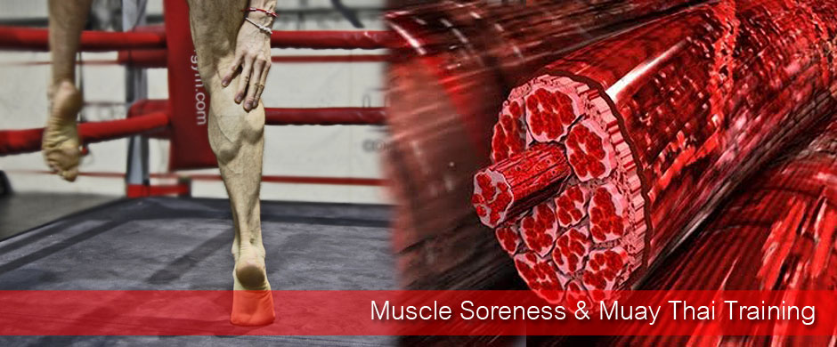 Muscle Soreness & Muay Thai Training