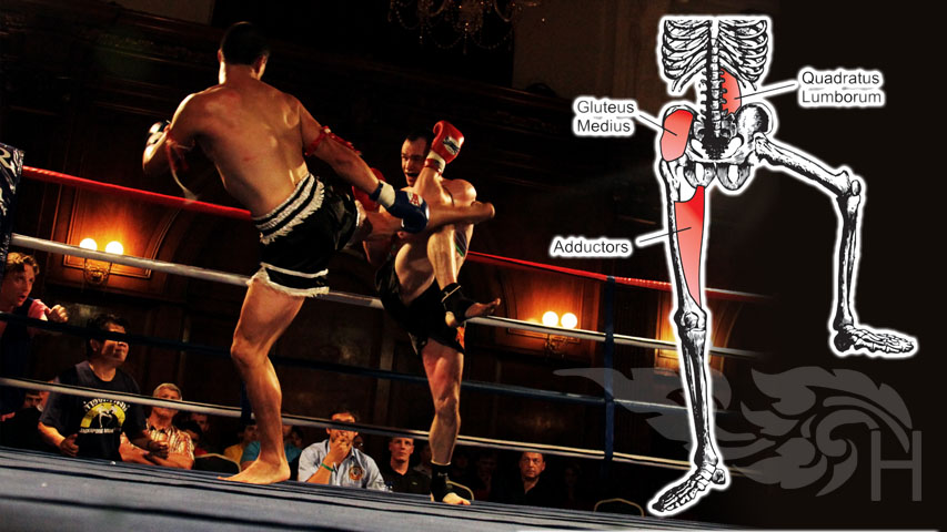 Why fighters should exercise on one leg