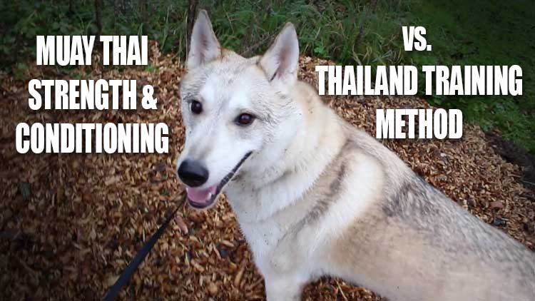 Muay Thai strength and conditioning vs Thailand method