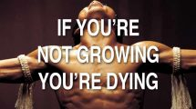 If You're Not Growing You're Dying