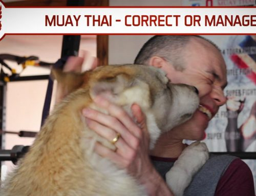 MUAY THAI – DO YOU CORRECT OR MANAGE?