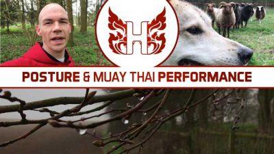 Posture and Muay Thai Performance