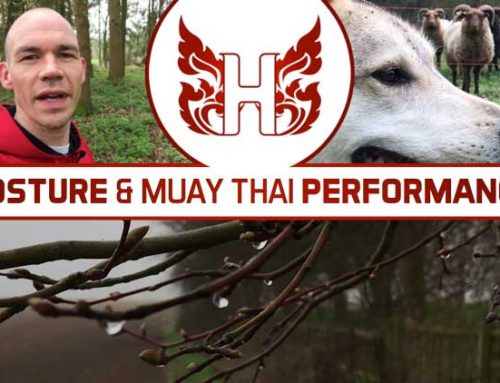 6 POINTS ABOUT POSTURE AND MUAY THAI PERFORMANCE