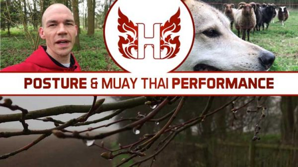 Posture and Muay Thai Performance