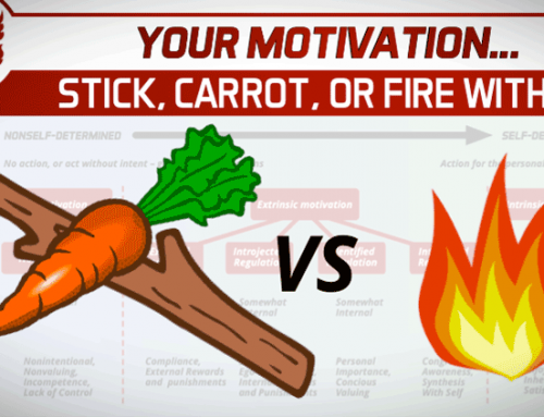 YOUR MOTIVATION – STICK, CARROT, OR FIRE WITHIN?