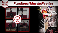 Functional Muscle Routine For Muay Thai