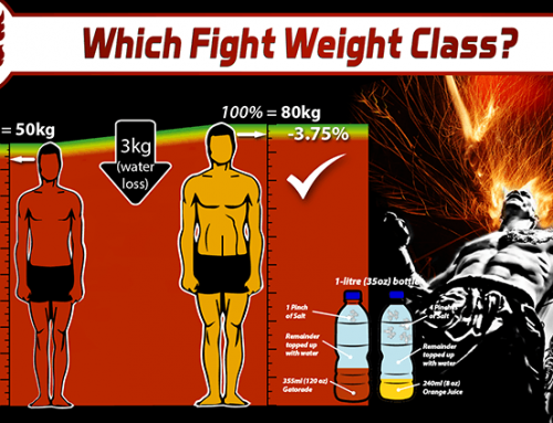 What Is My Ideal Fight Weight Class?