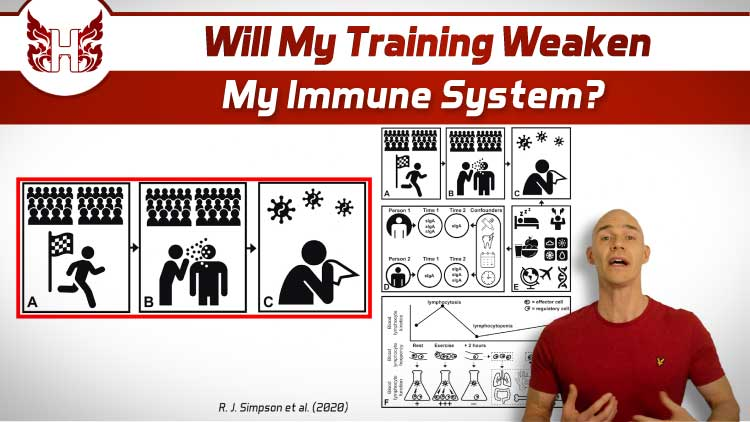 Will my training weaken my immune system?